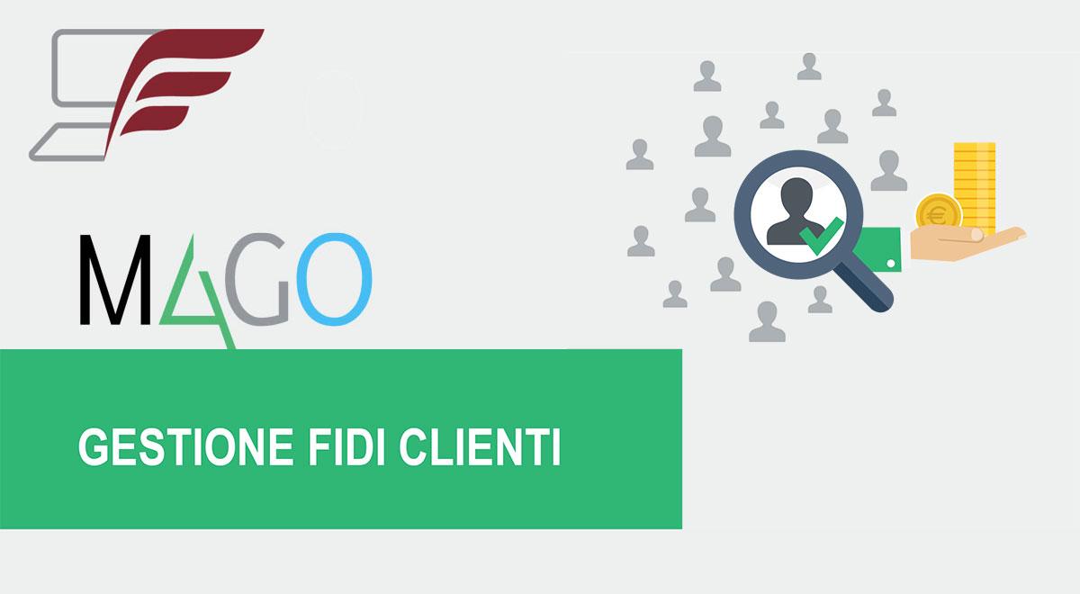 Moduli di Mago4: Gestione Fidi Clienti